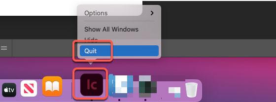 quit Adobe Incopy